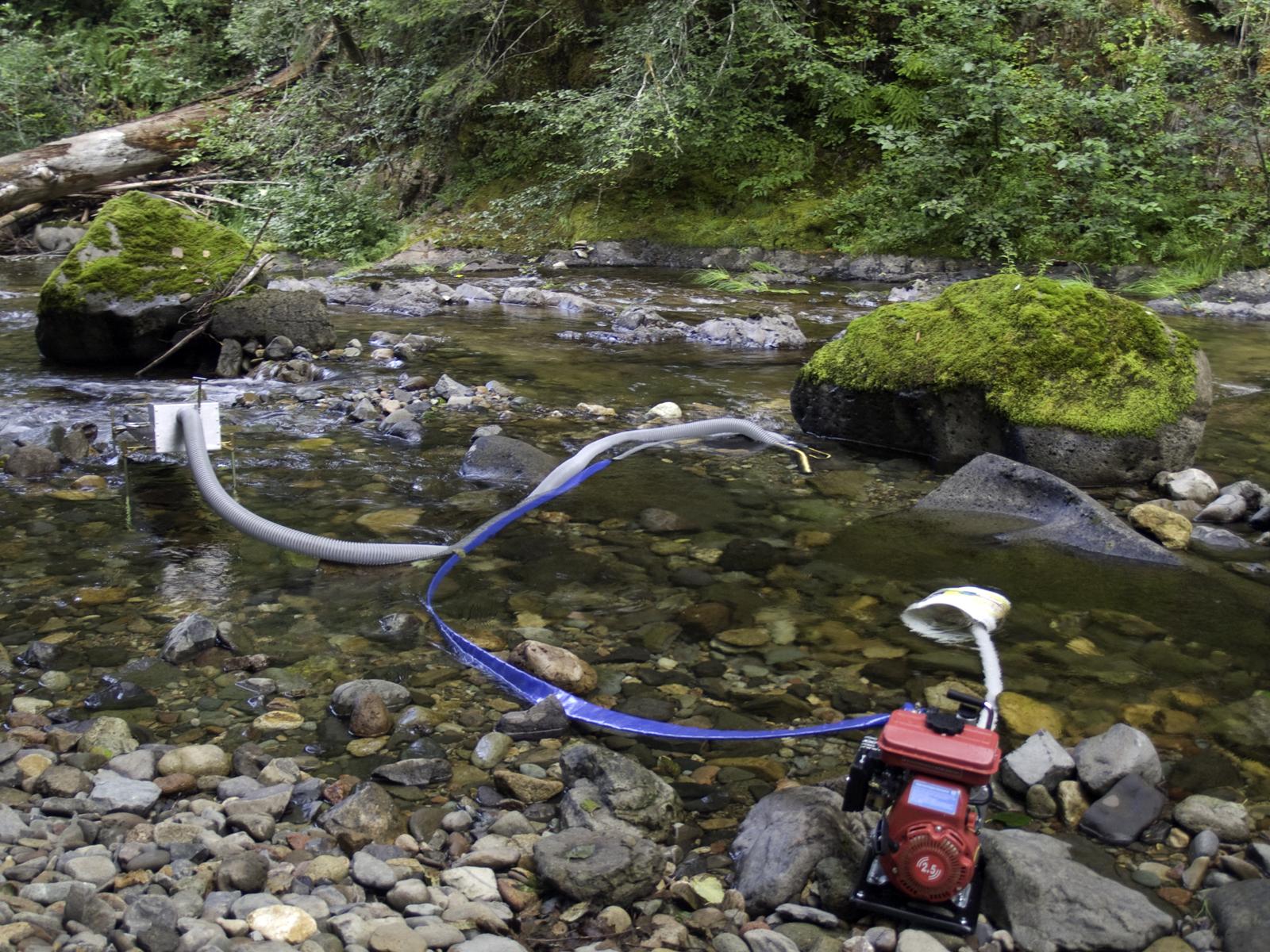 Small Gold Mining Dredges : How to gold farming quartzville creek oregon pacific